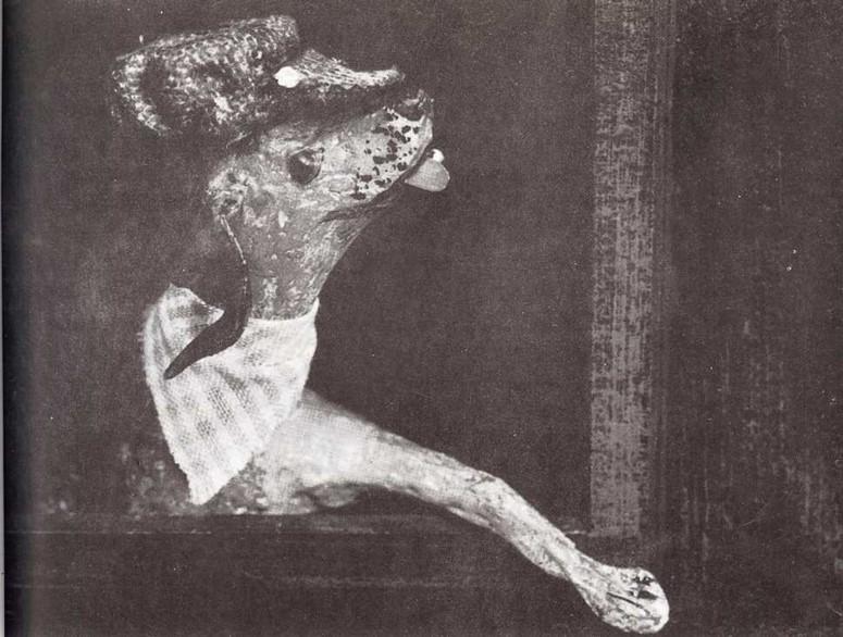 """""""Pronto"""", el perro fiel"""