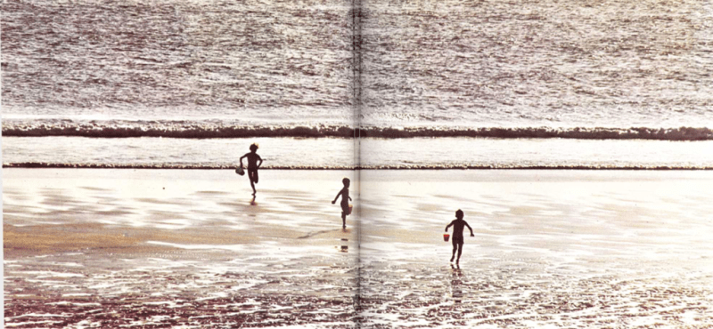 Playas cambiantes