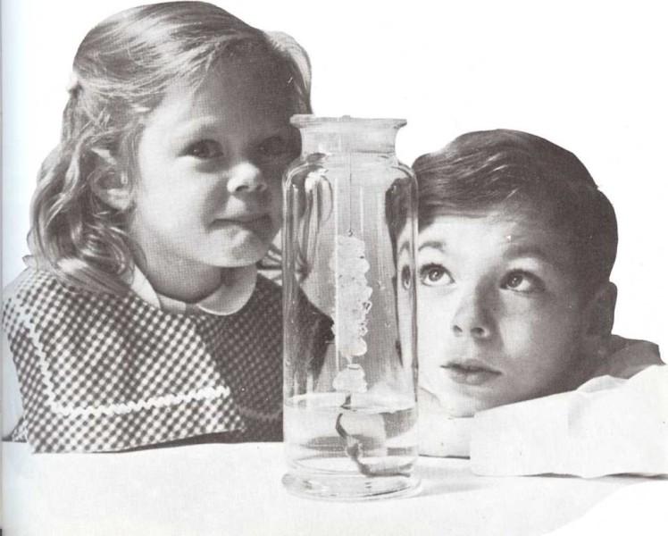 ¿Cómo obtener grandes cristales?