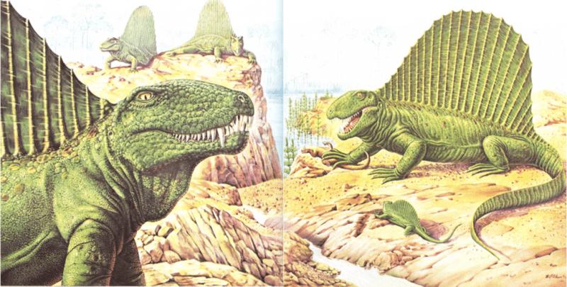 Un enigma de hace 250 millones de años