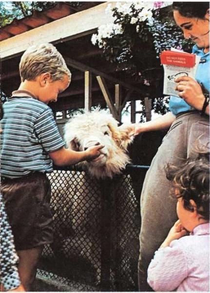 Un zoo infantil