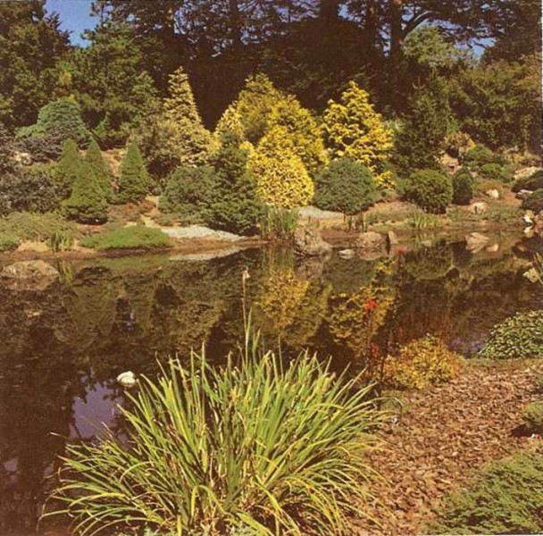 Jardines naturales