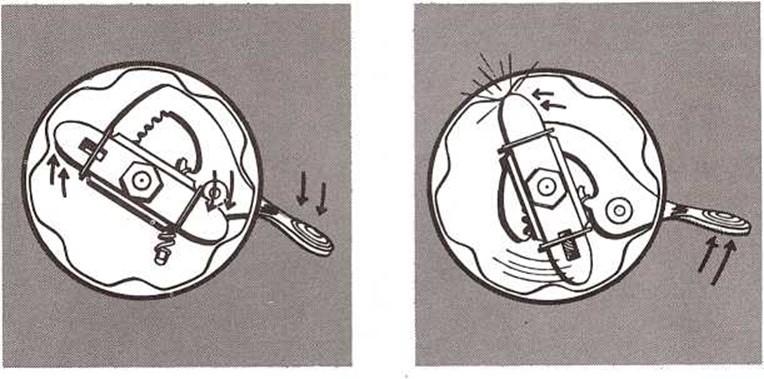 El timbre de la bicicleta