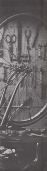 Radios de bicicleta
