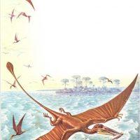 Reptiles voladores