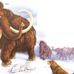 Elefantes con abrigo de piel