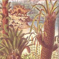 Plantas que vieron los dinosaurios