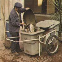 Cepillos para limpiar la calle