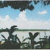 Los nombres de los dos ríos más largos del mundo