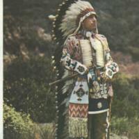 Las plumas de los indios